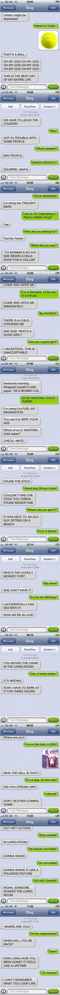 lmao I love the texts to dog