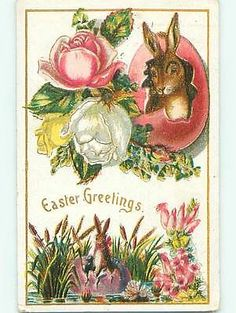 Divided-Back easter BUNNY RABBITS IN CRACKED EGGS & ROSE FLOWERS r3264