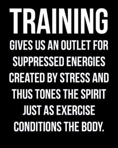 Training gives us an outlet for suppressed energies created by stress and thus tones the spirit just as exercise conditions the body. Boxing Training Workout, Training Fitness, Health Fitness, Body Training, Health Exercise, Muscle Fitness, Fitness Life, Arnold Schwarzenegger, Fitness Models