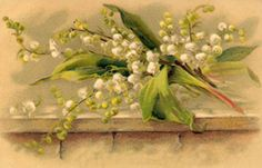 Lily of the valley postcard by Klein (Germany) in the early 1900's.