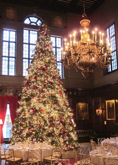 Beautiful Christmas Tree in the Harvard Hall room at the Harvard Club of NYC