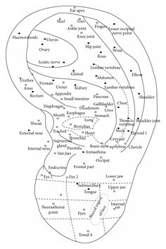Image Result For Auricular Acupuncture Ear Reflexology Points Acupressure