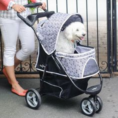 SOCIAL MEDIA SPECIAL - Unadvertised.  Today Only! Gen 7 Promenade Pet Stroller in Black Onxy only   reg. $139  -  SALE $125  -  While supplies last. http://www.jefferspet.com/products/promenade-pet-stroller?sku=G7PAW
