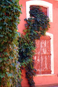The reds of Roussillon, Provence