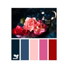 Design Seeds ❤ liked on Polyvore featuring design seeds, colors, palettes, backgrounds et colours