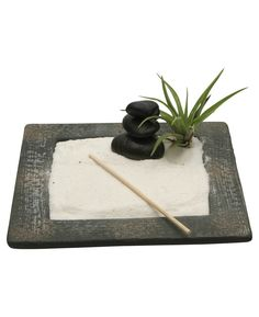 Meditation Zen garden with live air plant and black stone cairn. Designed in the USA, available at BuddhaGroove.com.