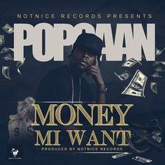 DJJUNKY - Money Mi Want Cover Art