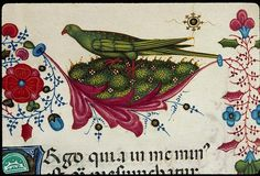Chambéry, BM, ms. 0004 Bréviaire franciscain vers 1430 http://bvmm.irht.cnrs.fr/sommaire/sommaire.php?reproductionId=12848
