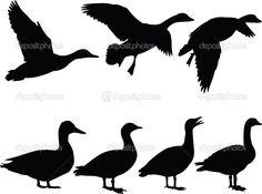 Yükle - Yaban ördeği siluet koleksiyonu — Stok İllüstrasyon #2247692