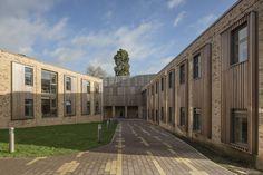 Galería de Escuela Freemen de la Ciudad de Londres / Hawkins\Brown - 1