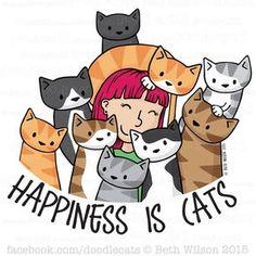 Kitties, lotsa kitties!!!