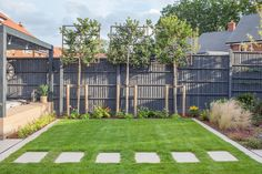 Pleached trees and lawn