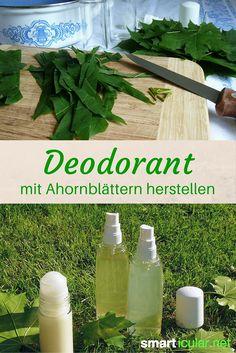 Ahorn-Blätter sind nicht nur essbar, sie eignen sich auch hervorragend als Grundlage für ein natürliches Deo. So stellst du dein gesundes Deo selbst her!
