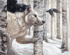 White wolf and the ravens