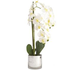 How to describe an orchid? Understated? Delicate? Difficult? Fortunately, there's nothing demanding about this Pier 1 exclusive. Our lovely faux orchid stands tall in its mercury glass container and will be just as regal next year—and years after.