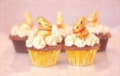 Adorn your cupcakes with Lindt GOLD BUNNY this Easter!  http://hub.am/YLvglm