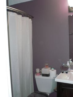 MY DILEMMA!!  What should I do with this blank space.  Just do a picture or had some shelving?  Or I could move the Mistos towel bar over the toliet and replace it with at picture.    I also hope to attempt to frame out the mirror(it going to be tight cause there is not much room between the light and the sink.  I will start pinning some ideas.  Would love yalls(yes, that is a work in the South) opinion.