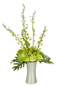Provide subtle metallic accents with a Green Ice Vase Shop Ideas, Oasis, Flower Arrangements, Craft Supplies, My Design, Metallic, Floral, Green, Flowers