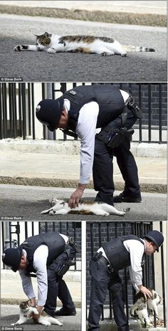 Good policeman! This reminds me of Suggs :(