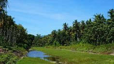 Nusa Penida ist ein geheimes Paradies! In unserem Reisebericht verraten wir euch die schönsten Strände, besten Sehenswürdigkeiten und viele weitere Tipps.