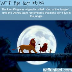 the lion king wtf fun facts – Historical Figures Disney Princess Facts, Disney Fun Facts, Funny Disney Memes, Disney Jokes, Wtf Fun Facts, Funny Facts, Random Facts, Punk Disney Princesses, Disney Characters
