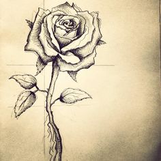 Rose tattoo design for my friend in Boston.  He wanted it to represent the women in his life (mother, wife, and daughter).