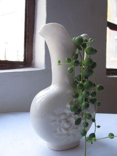 Terrario en ánfora de porcelana