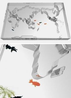 Fish tank in style of world map