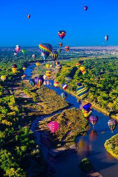 Hot air balloons flying low over the Rio Grande River just after sunrise, Albuquerque International