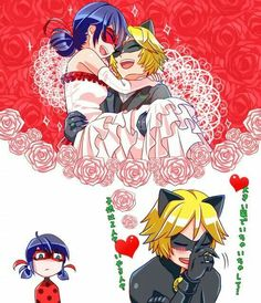 Miraculous Chat Noir and Ladybug Married