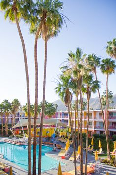Rainbow Hotel | Saguaro Palm Springs