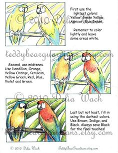 Here is a TWO page PDF file that contains directions to colour realistically using only a 24 pack. Crayon Drawings, Bird Drawings, Easy Drawings, Pack Of Crayons, Colored Pencil Techniques, Learn Drawing, Colouring Techniques, Coloured Pencils, Drawing Stuff