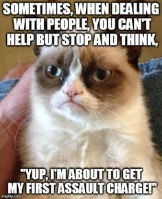 grumpy cat-- oh so true. I need to hang this up at work