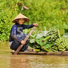 'Vietnamese woman rowing  boat in the Mekong River Delta, Vietnam' royalty-free stock photo