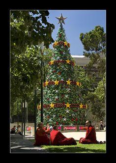 Christmas Tree, Melbourne, Australia