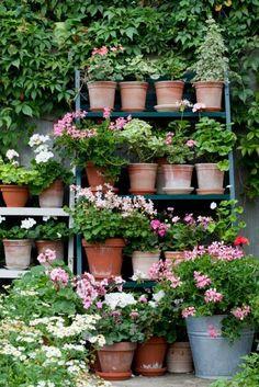 outside sunroom - so pretty- age terra cotta pots and add pretty pink flowers