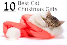 10 Best Cat Christmas Gifts | Reviews for Meow