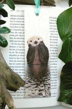 Keep track of your place in a favourite book, journal or magazine with this unique handmade wood otter bookmark. You will no longer need to reach for an old receipt or scrap of paper to mark your place…and no more folding the corners of pages! Each bookmark is handmade in Australia using lightweight, flexible wood, gorgeous photo image transfer and finished with coloured ribbon. #stitchandwood #bookmark #otter #giftidea Flexible Wood, Wood Transfer, Ribbon Colors, Book Journal, Otters, Cute Baby Animals, Book Lovers, Are You The One, Bookmarks