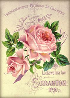 Digital Collage Sheet Faded Roses This listing is for a sweet collection of antique roses on a background of old cabinet cards! Vintage Prints, Floral Vintage, Art Vintage, Vintage Paper, Vintage Flowers, Victorian Flowers, Art Flowers, Vintage Labels, Vintage Ephemera