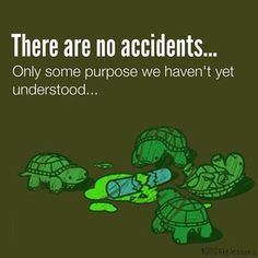 There are no accidents. Yes I just combined a Deepak Quote with the Ninja Turtles. Ninja Turtle Quotes, Master Splinter, Tmnt Turtles, Tmnt 2012, Teenage Mutant Ninja Turtles, Make Me Happy, Quotes To Live By, Wisdom Quotes, Life Lessons