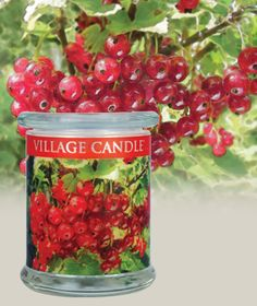 Mountain Currant-Radiance  Candle Collection Scented Candles | Village Candle