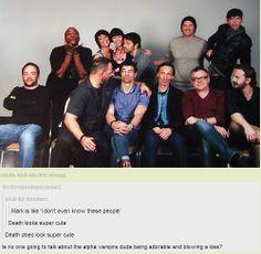 This cast. This fandom