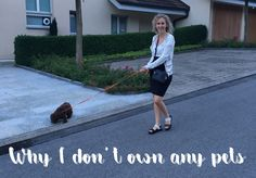 Why I don't own any pets - http://simonascornerofdreams.blogspot.ch/2017/09/why-i-dont-own-any-pets.html #lbloggers