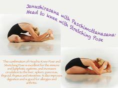 33 best yoga pretzel images  yoga yoga poses yoga