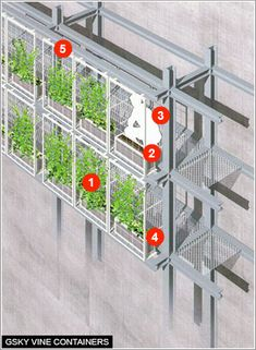 Vine Containers - GSky Plant wall system