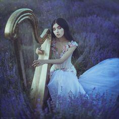 lavender_nocturne_by_anitaanti-d8xnkpf.jpg (800×800)