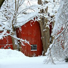 Winter Barn- 500px / Heidi Stauber