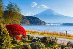Mount Fuji | Best Time | When to Go