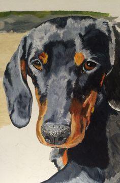 Arte Dachshund, Dachshund Love, Watercolor Animals, Watercolor Art, Animal Paintings, Dog Art, Dog Treats, Puppy Love, Pet Dogs