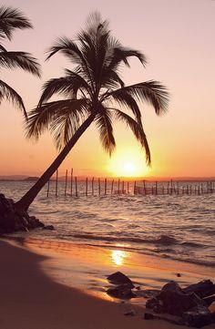 beach - Por do Sol. Maraú, Brasil